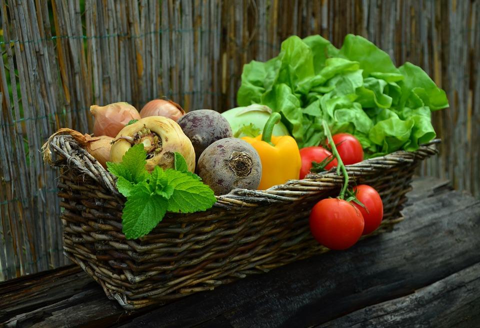 Les avantages d'avoir un jardin chez soi
